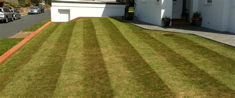 haircut deals worthing mowing clean cut gardening services