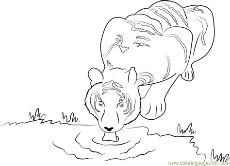 coloring page drinking water generous drinking water coloring pages pictures