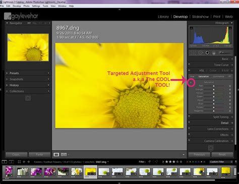 tutorial of lightroom 3 174 best images about adobe lightroom tips on pinterest