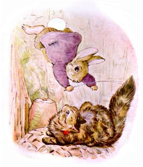the rabbit how the culture of corrections encourages crime books beatrix potter quotes by rabbit author