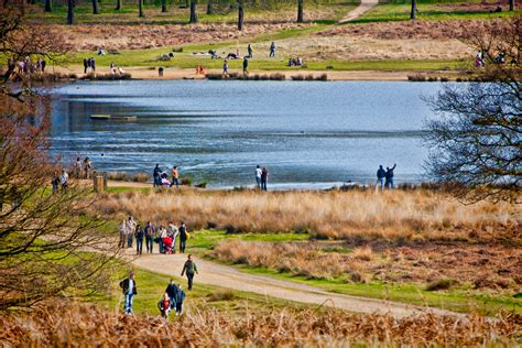 richmond park parks of to visit travelling moods