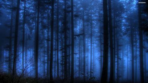 wallpaper blue forest dark blue forest wallpaper