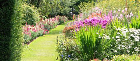 cespugli per giardino cespugli aiuole e siepi il giardino riprende vita