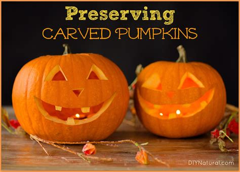 how to preserve pumpkins for preserving carved pumpkins