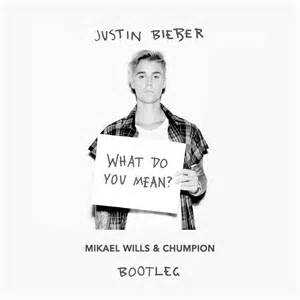 What Does What Do You Mikael Wills Chumpion Bootleg