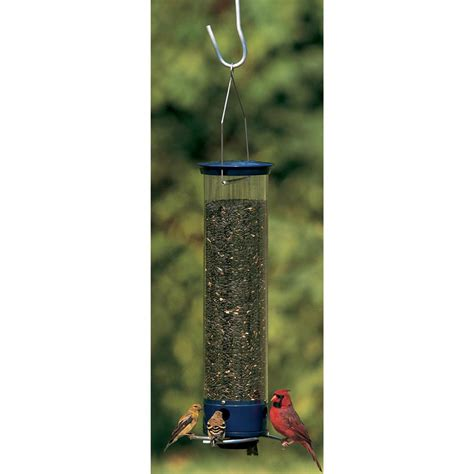Droll Yankee Squirrel Proof Feeder droll yankees 174 whipper squirrel proof bird feeder 163492