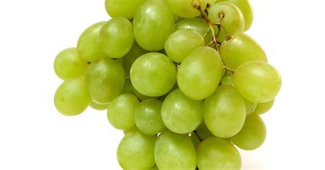 plantas medicinales plantas medicinales uva descripcion y usos medicinales