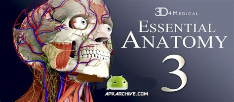 essential anatomy 3 apk essential anatomy 3 v1 1 3 apk free apkmirrorfull