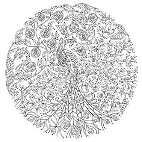 Buy Johanna Basford Secret Garden Peacock Colouring Canvas