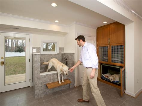dog going to the bathroom in the house photos hgtv