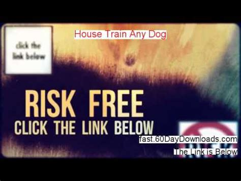 house train any dog house train any dog review best 2014 ebook review youtube