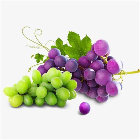 imagenes de uvas naturales fresh grapes purple green grape png and psd file for