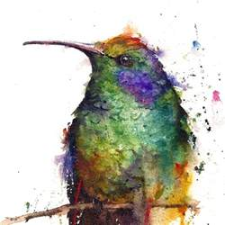 water color animals animal watercolor portraits burst with color my modern met