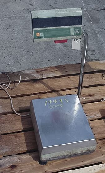 bench scales for sale bench scales for sale 28 images bench scale quality