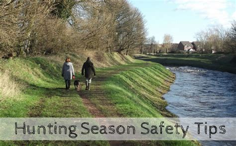 Looks For Your Pet Isnt Walking Season by Safety Tips For Walking Your During Season