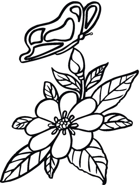 imagenes de flores y corazones infantiles galer 237 a de im 225 genes dibujos de mariposas para colorear