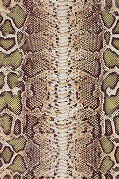 pin texture snake pictures reptiles skin pattern animals wallpaper on rubber st snake skin lizard scales fish python used destash lizards python