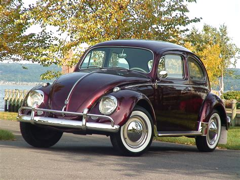 vintage volkswagen sedan 1960 stunner vw beetle bug sedan classic vw beetles