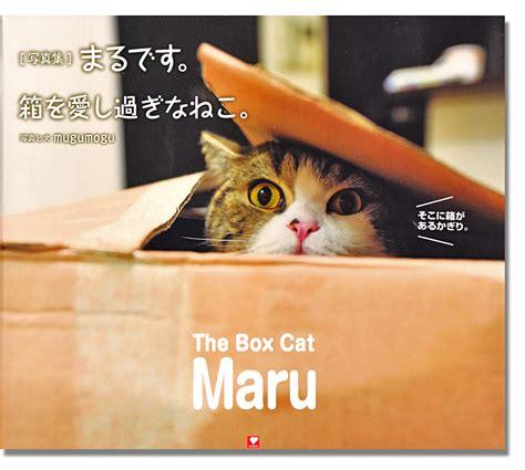 i am a cat books i am maru desu the box cat maru book anime books