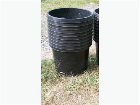 20 gallon planter plant pots 3 gallon to 20 gallon duncan cowichan