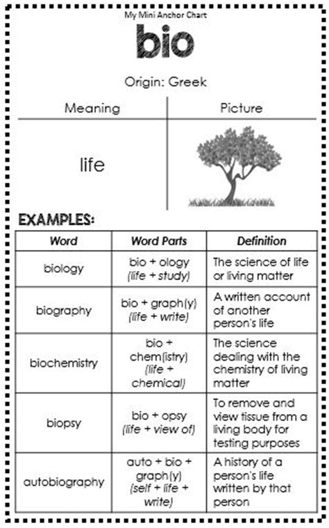 biography meaning in english 93 best images about anchor charts on pinterest writers