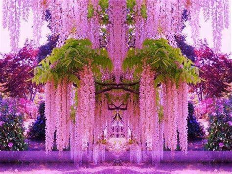 wisteria color wisteria the color purple