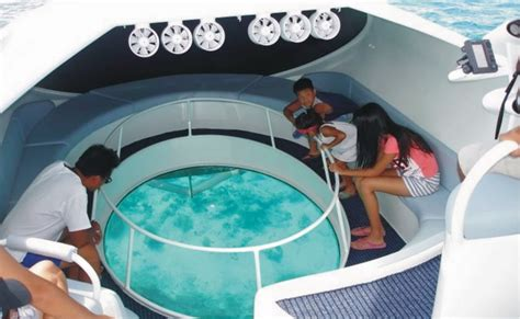 glass bottom boat tours gold coast dolphin glass bottom boat ride in andaman thrillophilia