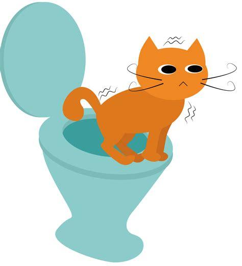 Bak Pasir Litter Box Kucing S Fairyley Story Indonesia Toilet Kucing
