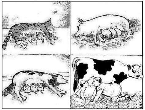 latte alimentazione il latte a ogni specie il suo fruttalia