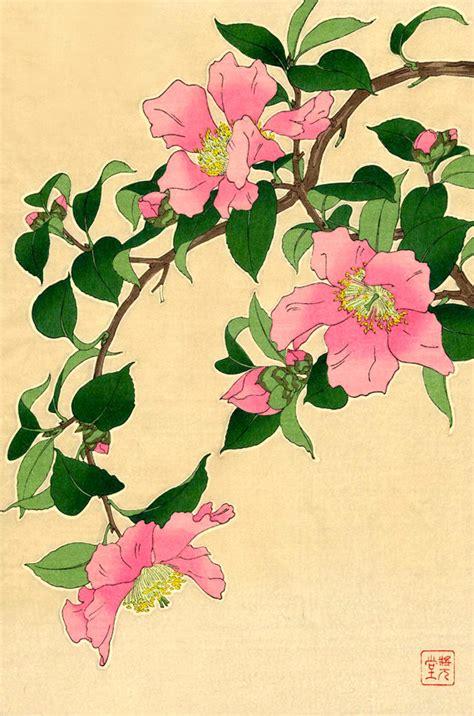 botanica fiori ste d arte giapponese di fiori arte botanica floreale