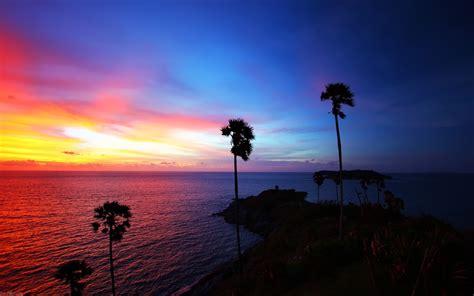 island sunset palm trees landscape sea silhouette