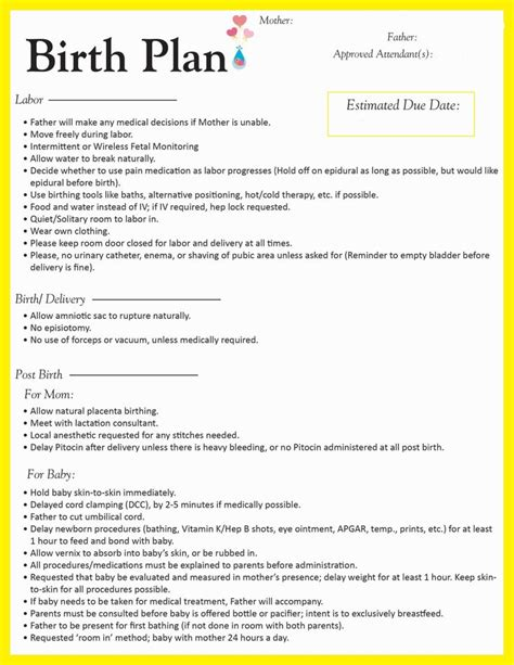 Home Birth Birth Plan | 28 natural birth plan template for hospital births