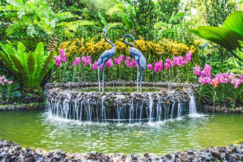 Botanical Garden Singapore Singapore Botanic Gardens For The Of Orchids And