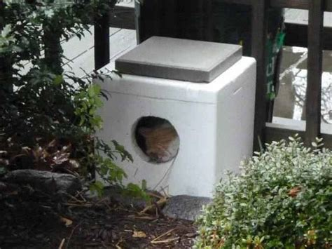 Feral Cat House by 15 Must See Heated Outdoor Cat House Pins Outdoor Cat