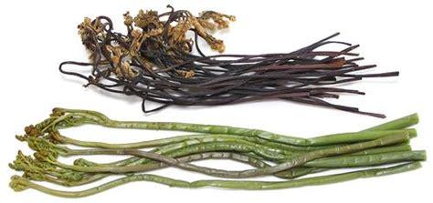 Dried Gosari bracken fern