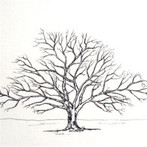 designer trees oak tree design www imgkid the image kid has it