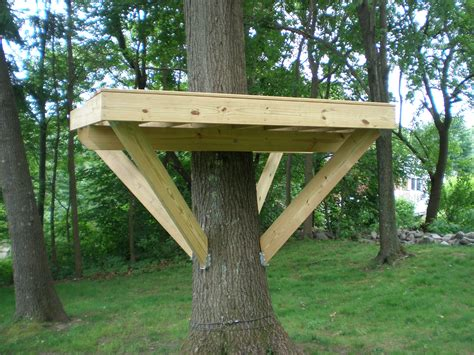 free tree house building plans modern magic building a basic treehouse plans free
