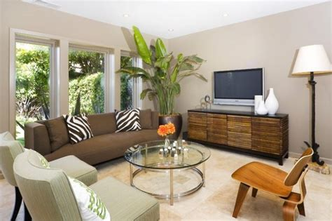 plants for the living room 18 outstanding ideas to decorate the living room with flowers plants