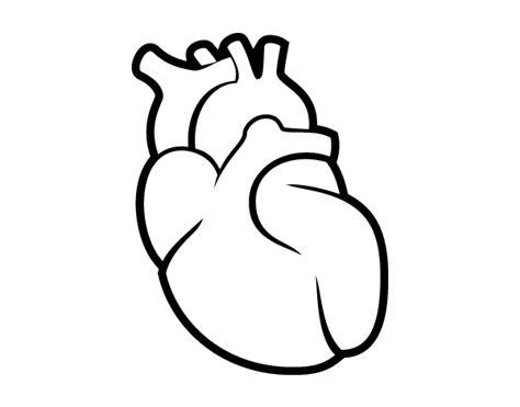 imagenes para dibujar un corazon dibujo de el coraz 243 n para colorear dibujos net