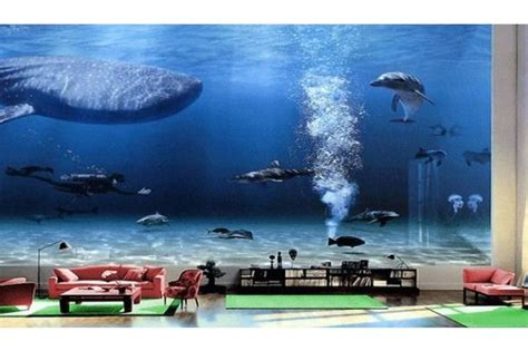 bill gates living room bill gates house aquarium www imgkid com the image kid