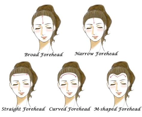 natural m shaped hairline women how forehead shapes can reveal your personality alldaychic