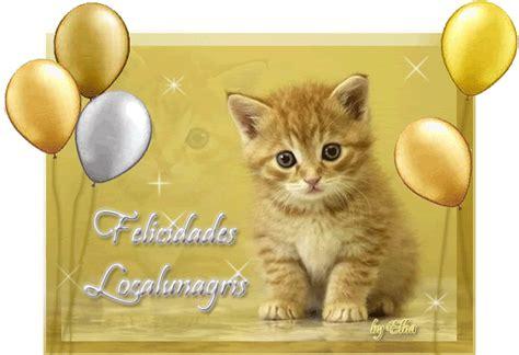 frases de cumpleaños imagenes gif im 225 genes gif de gatos con frases de feliz cumplea 241 os