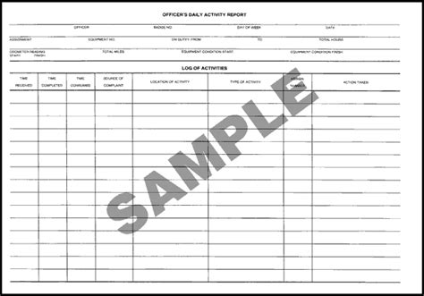 security officer daily activity report template