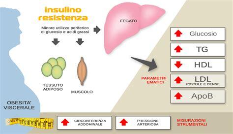 alimentazione per insulino resistenza insulino resistenza il pre diabete non ci fa dimagrire