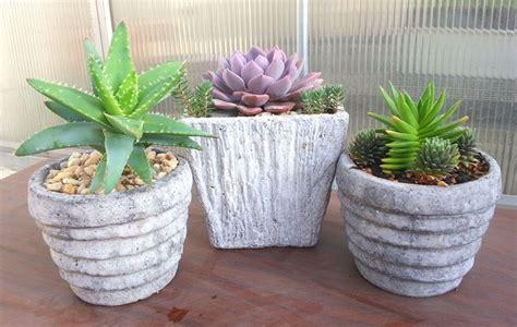 fiori per fioriere fioriere cemento vasi fioriere in cemento