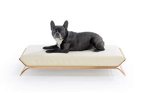 modern dog beds modern dog beds and bowls from designwelove dog milk
