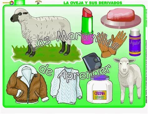 derivados de los animales derivados de la gallina animales de la granja 191 qu 201 alimentos y abrigos nos