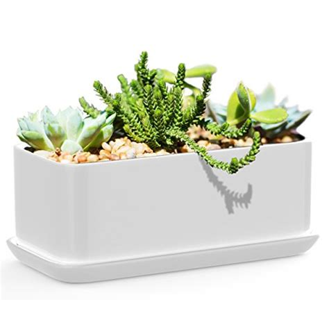 10 Inch White Ceramic Plant Pots by Succulents Choice 10 Inch Rectangular White Ceramic