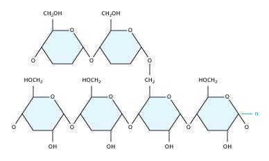 carbohydrates molecule complex carbohydrate molecule www pixshark images