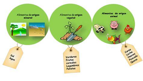 imagenes de origen animal vegetal y mineral alimentos de origen vegetal animal y mineral imagui